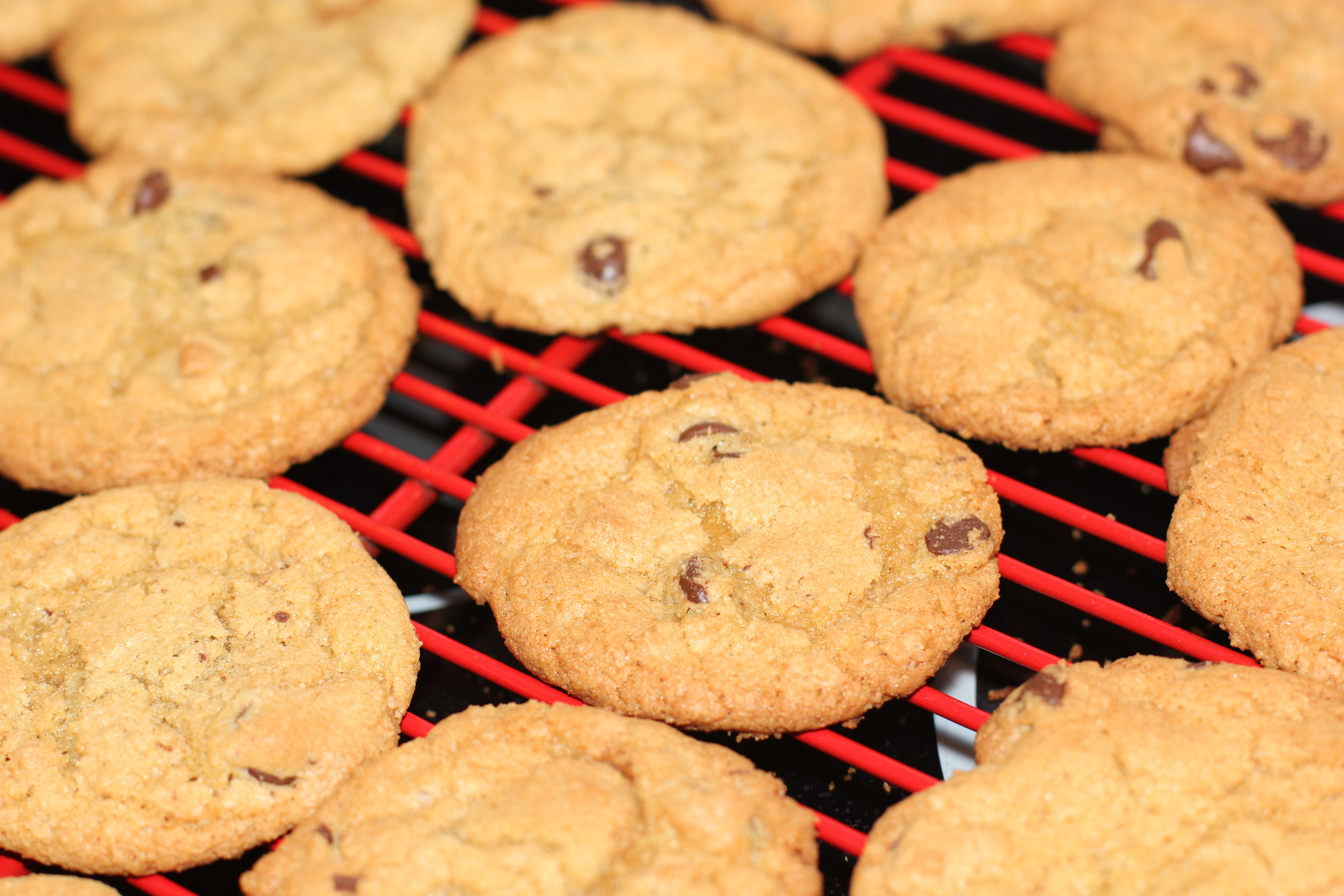 Honey Badger's Gluten-Free Chocolate Chip Cookies from Heaven
